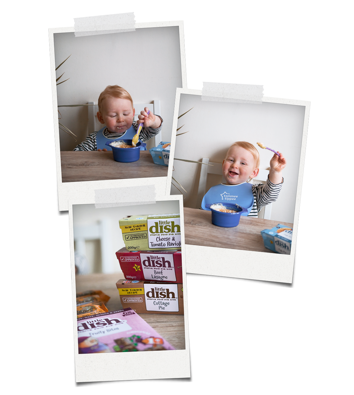 baby bjorn little dish review highchair toddler messy eating