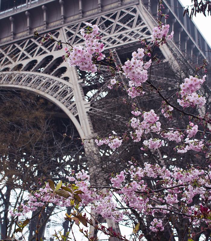 Paris Photo Diary.